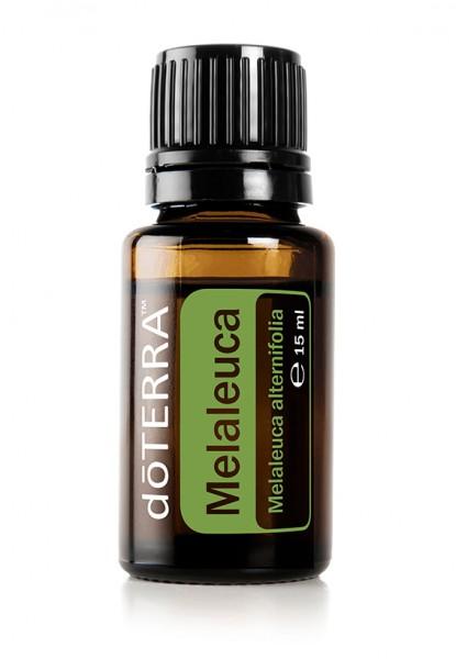 doTERRA Melaleuca (Teebaumöl)